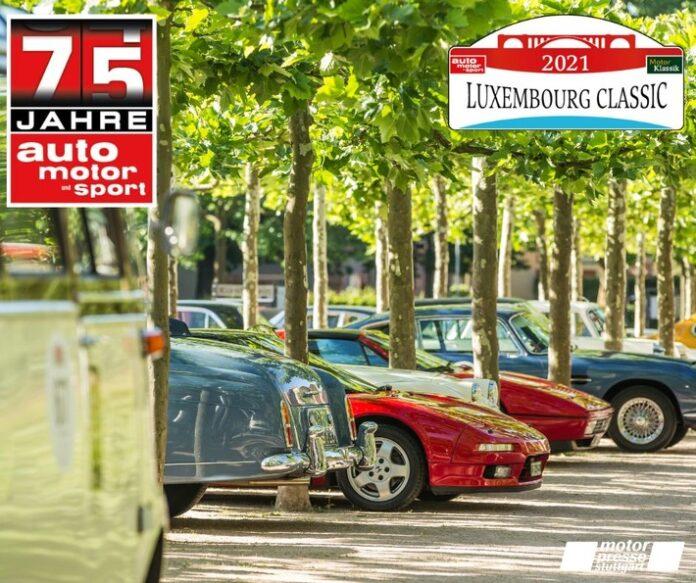 image 1 258 696x583 - Walter Röhrl und Christian Geistdörfer starten bei der Premiere der Luxembourg Classic